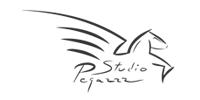 Studio Pegazz